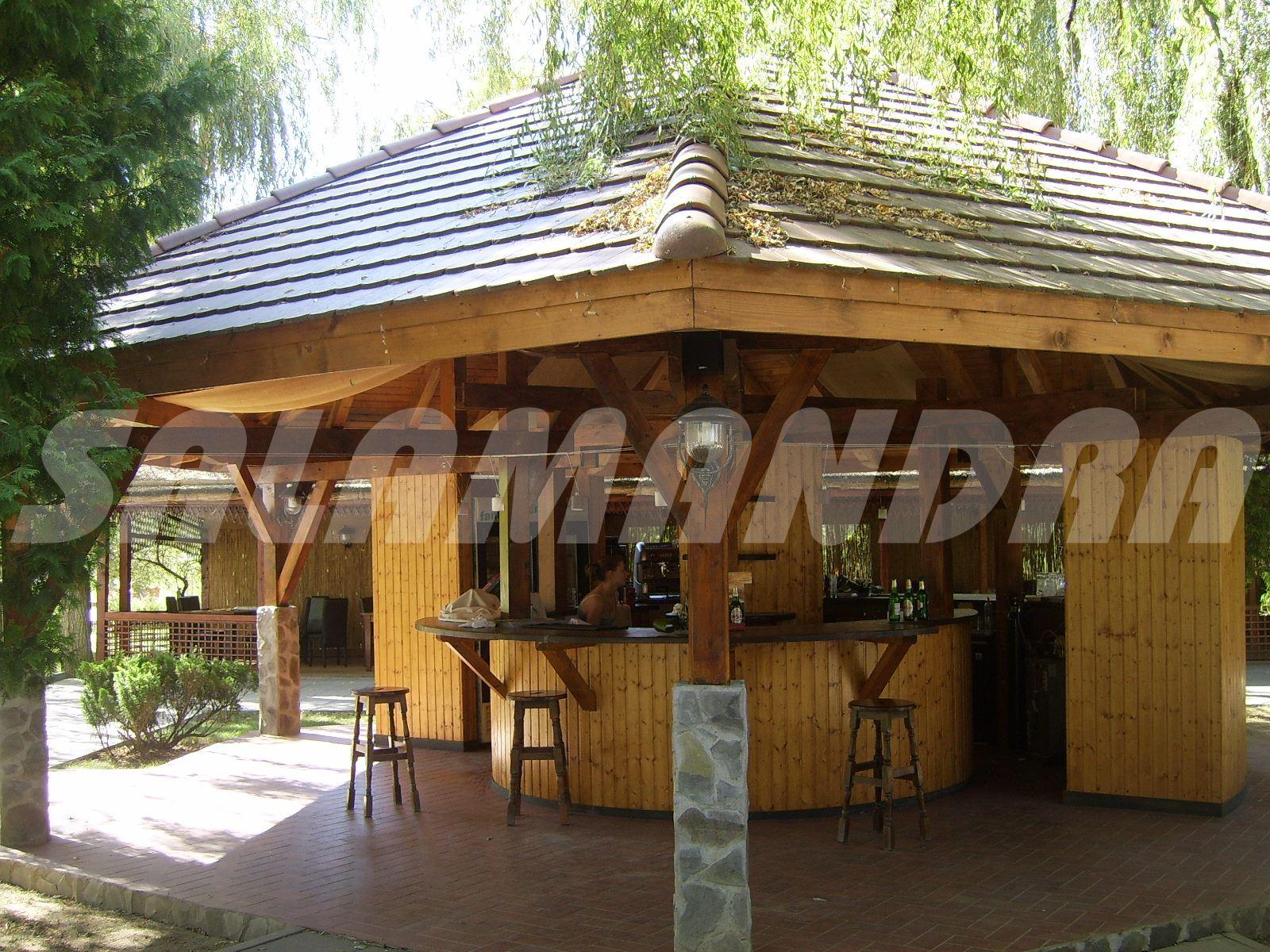 Abri De Jardin De Roumanie Garage Tonnelle En Bois